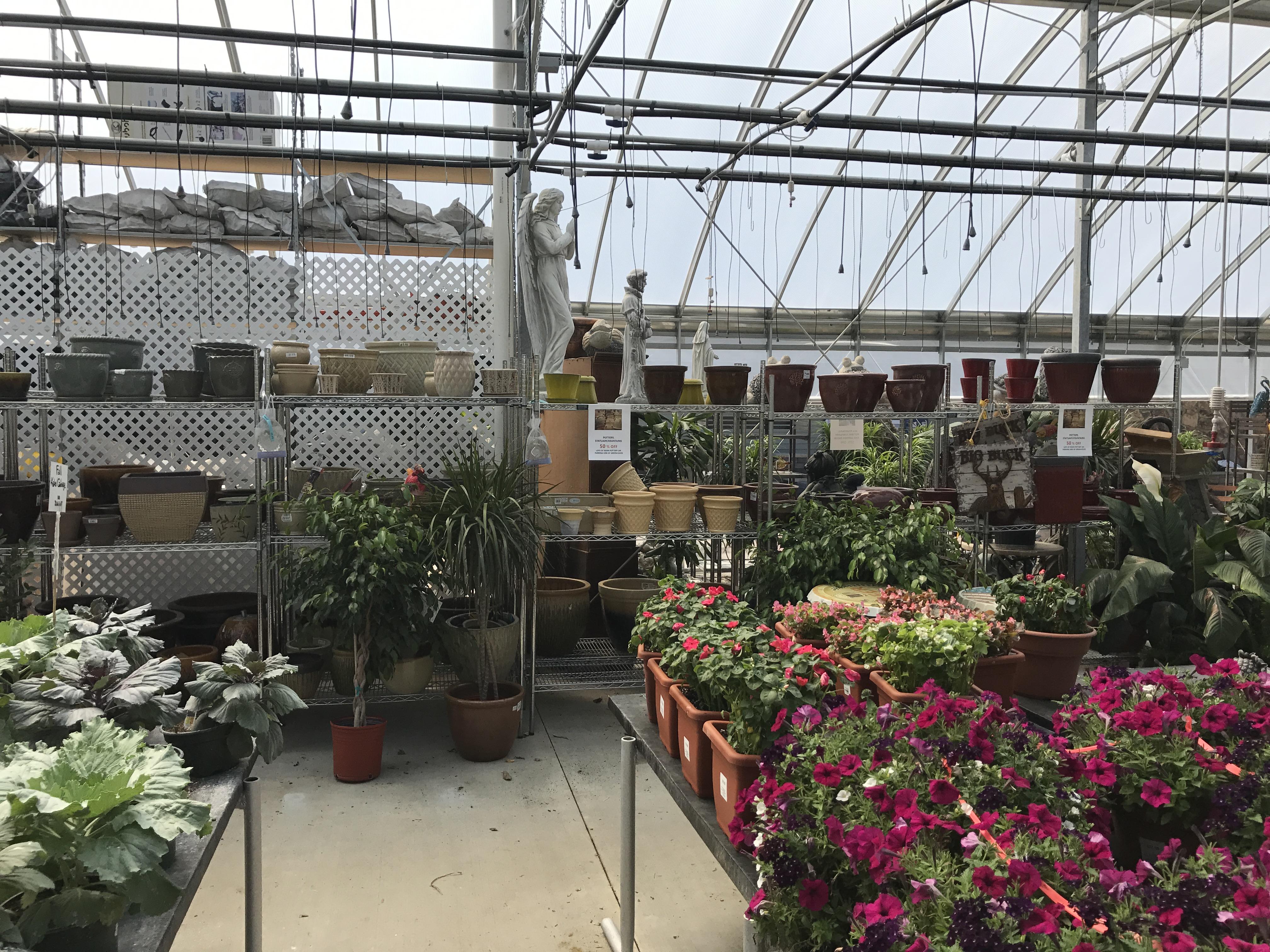 Pettitis garden center fasci garden - Petitti garden center strongsville ...